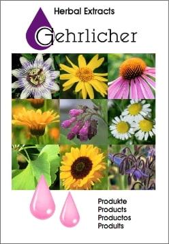 broschüre3